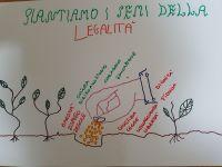 disegno_sulla_legalit